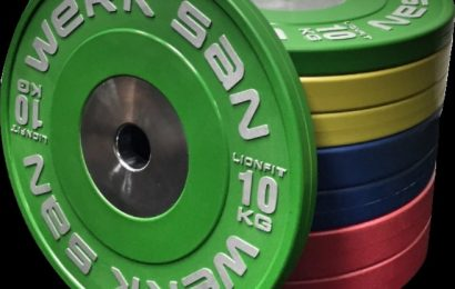 Review: Werksan LionFit Weight Plates